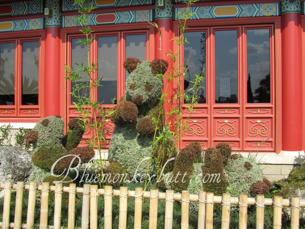 Pandas outside of the China Pavilion at the EPCOT International Flower and Garden Festival during Disney Social Media Moms 2011