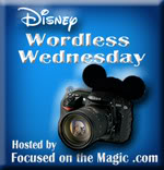 Wordless Wednesday Disney Style