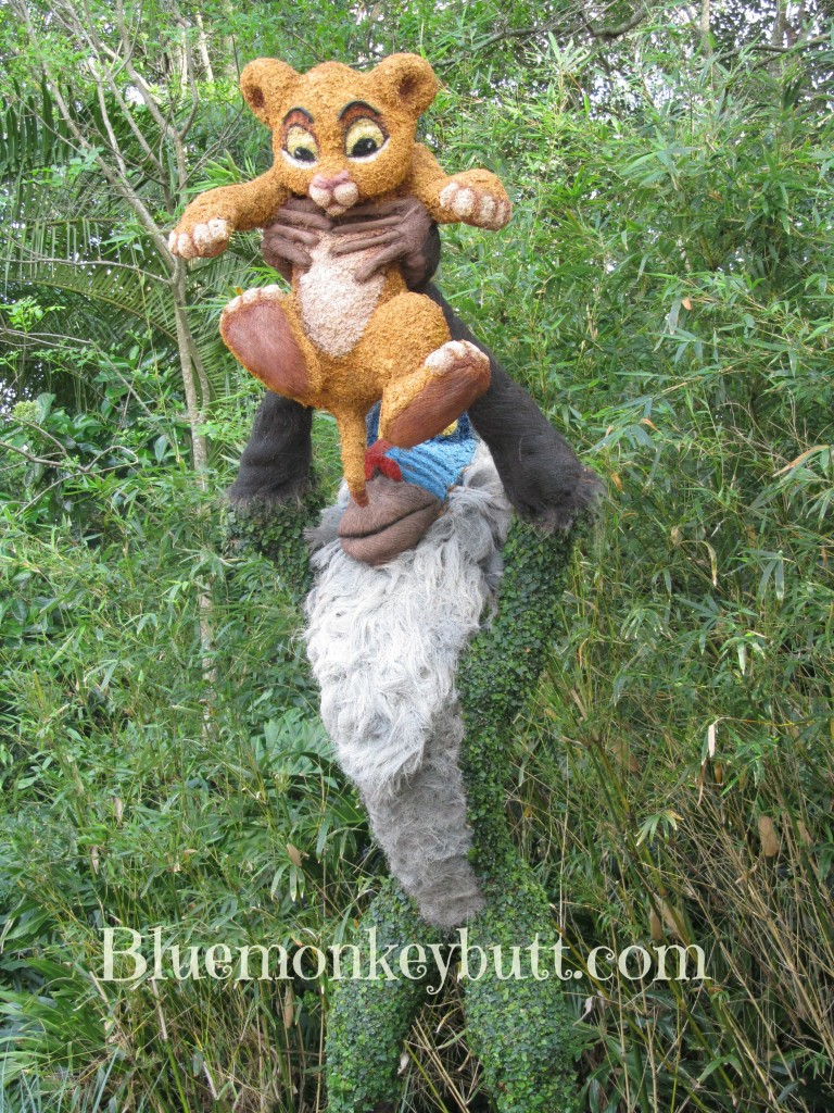 Rafiki Holding Simba. EPCOT International Flower and Garden Festival