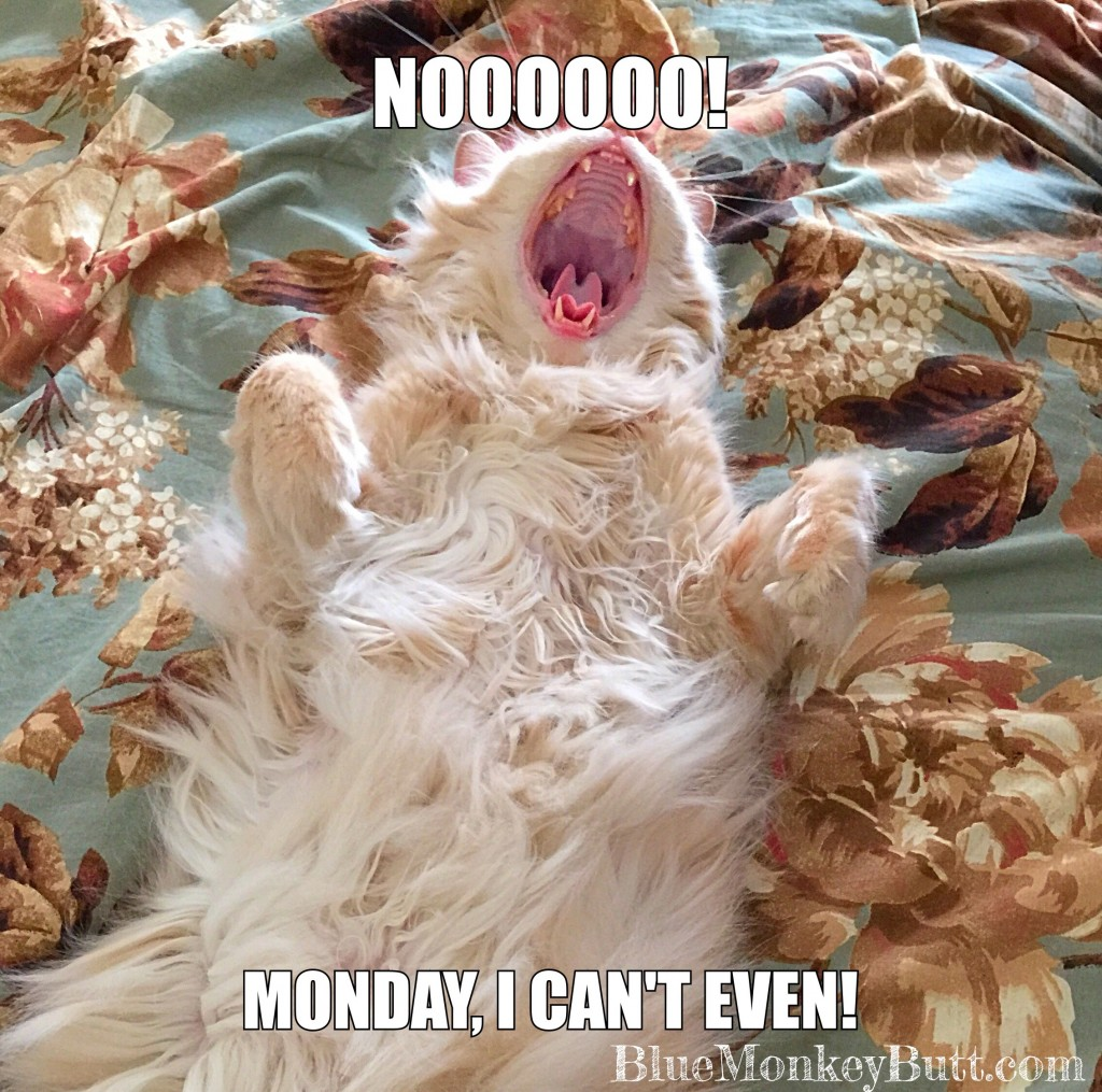 Monday I Can't Even