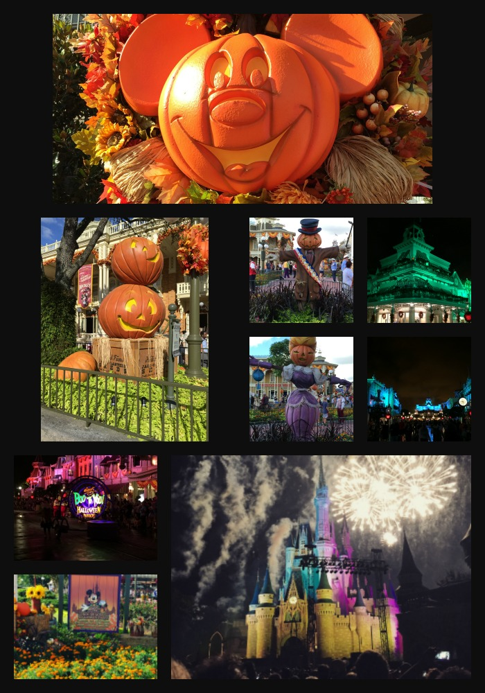 fall at magic kingdom park