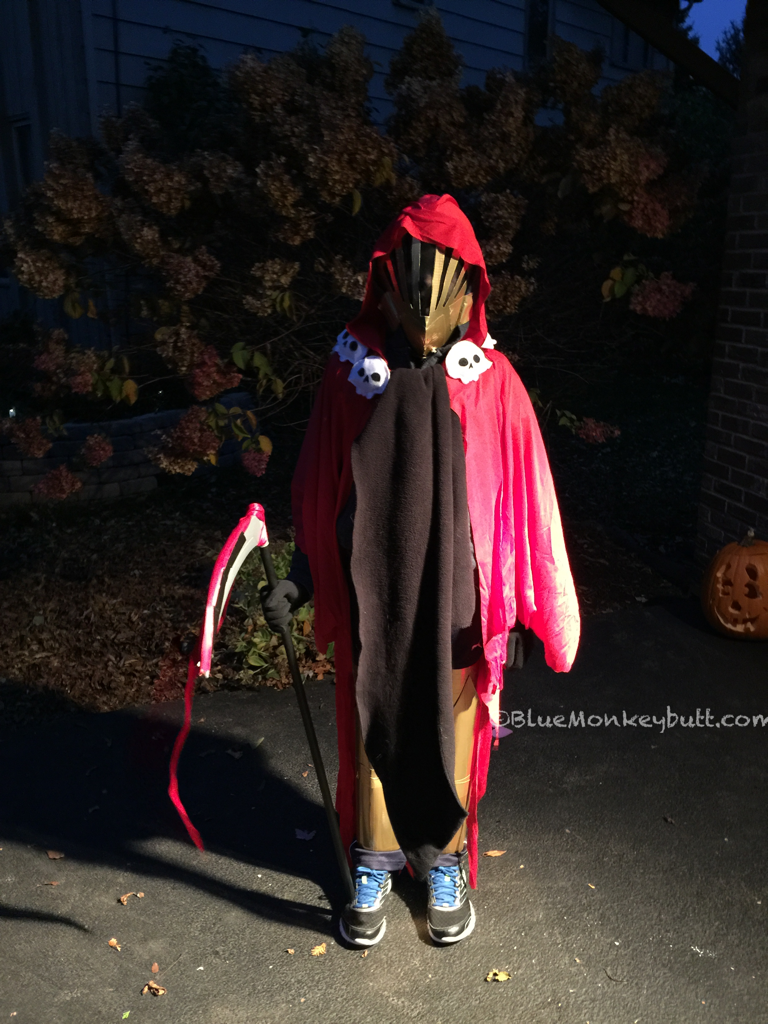 Specter Knight Halloween costume