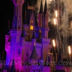 Wordless Wednesday Disney Style!