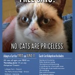 Free Cats & Florida, Time to be Random!