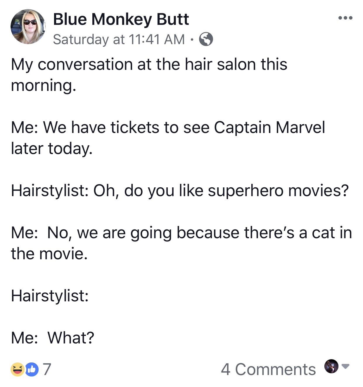 Facebook post stating we went to captain marvel because there was a cat in the movie